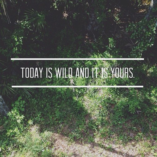 Today is wild and it's yours.