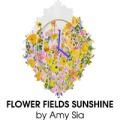 flowerfieldssunshinebyamysia