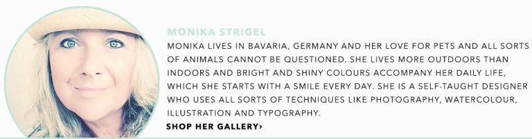 meet-the-artist-monika-strigel